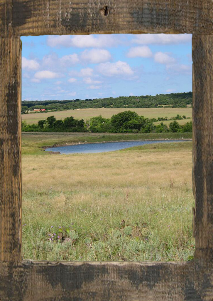 texas land for sale penelope texas